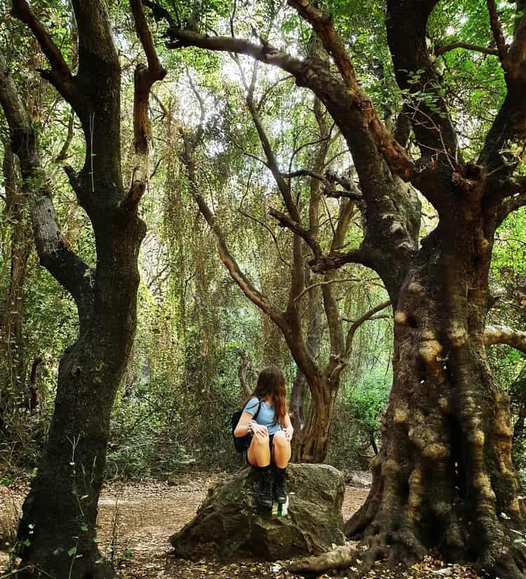 נחל כזיב - כנרת מטיילת - הטיול הכי יפה בארץ - לטייל עם ילדים
