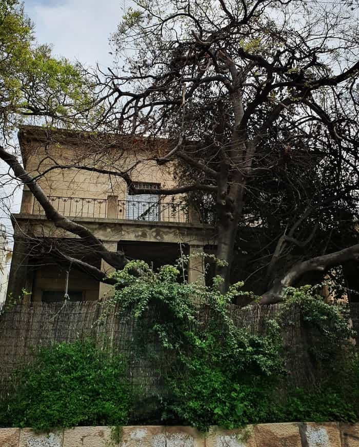 הבית ברחוב חיסין - תל אביב אהובתי - כנרת מטיילת - לטייל בתל אביב