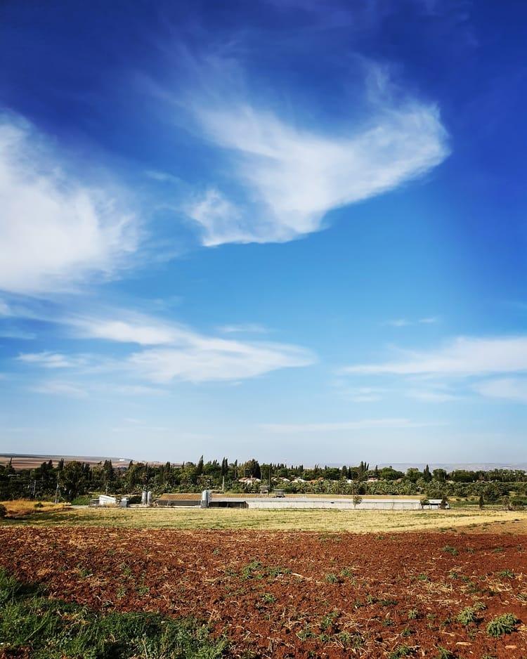קיבוץ ניר דוד - ענק המעיינות - כנרת מטיילת - עין שוקק