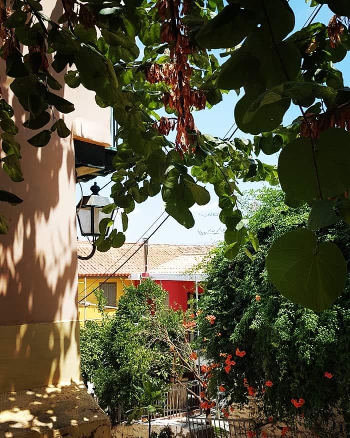 """פלופונס - יוון למטייל - נפפיליו - יוון משפחה - יוון עם ילדים - טיולים בחו""""ל - כנרת מטיילת"""
