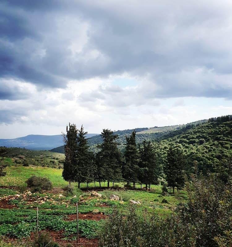 הר עצמון - יודפת - גליל תחתון - טיול עם ילדים - כנרת מטיילת