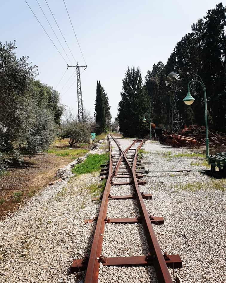 רכבת אלונים קיבוץ עין שמר - טיול לשבת עם ילדים - כנרת מטיילת - אזור מנשה
