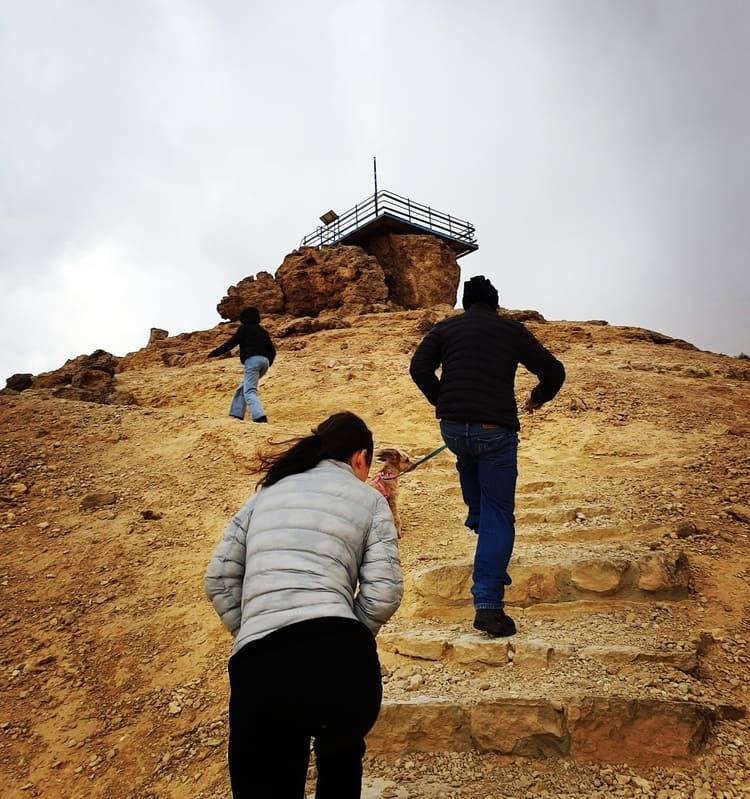 הר גמל - כנרת מטיילת - מצפה רמון עם ילדים