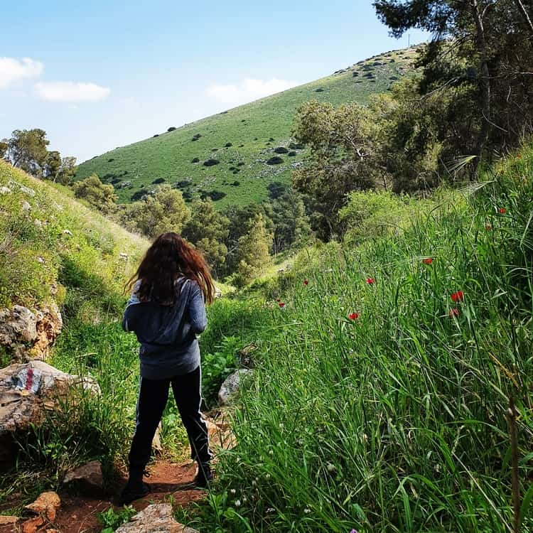נחל יצפור - הר הגלבוע - טיול עם ילדים - כנרת מטיילת