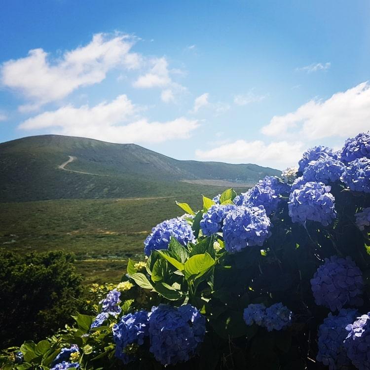 flores island azores - האיים האזוריים עם ילדים - פלורס - פורטוגל
