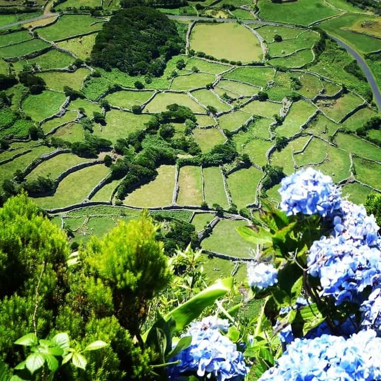 האיים האזוריים - flores island azores - האי פלורס - Faja Grande