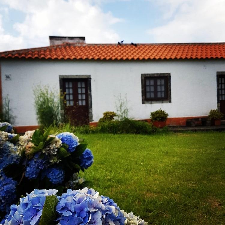 flores island azores - האיים האזוריים עם ילדים - פלורס - פאג'ה גרנדה - Faja Grande