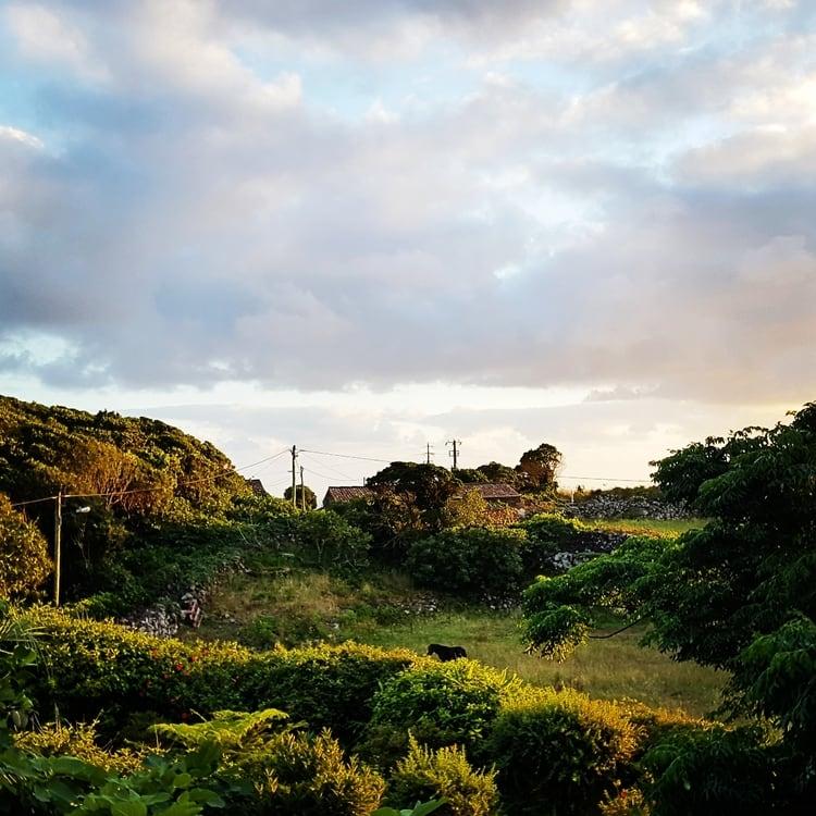 flores island azores - האיים האזוריים עם ילדים - פלורס - פאג'ה גרנדה - Aldeia da cuada