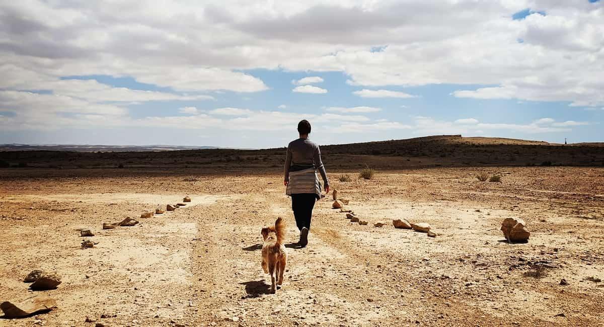 ניצנה - חמוקי ניצה - כביש 10 - טיול עם ילדים - כנרת מטיילת