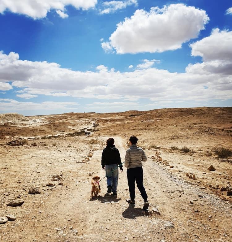 חמוקי ניצנה - טיול בדרום עם ילדים - כנרת מטיילת