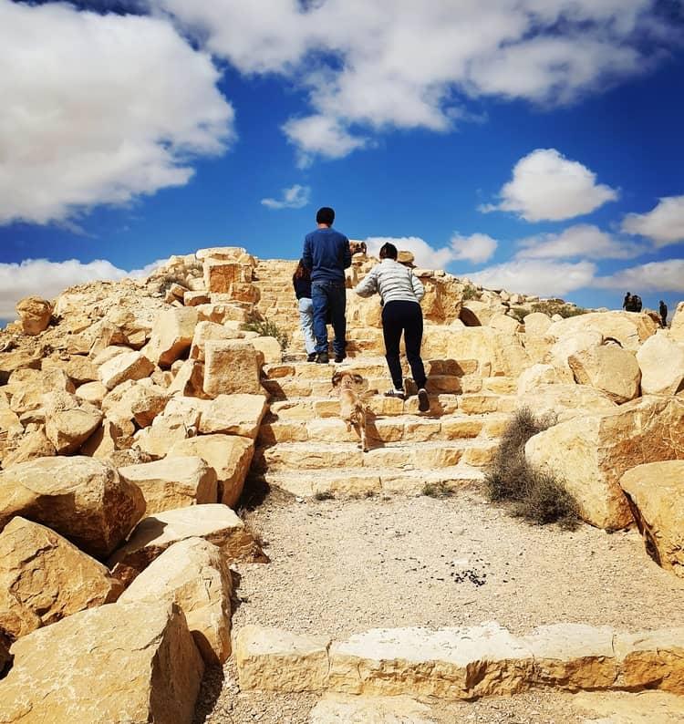 כביש 10 - טיול עם ילדים - כנרת מטיילת - מצפור הר חורשה