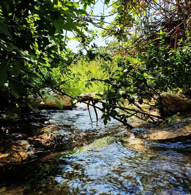 עין פרט עם ילדים - טיול מים במרכז הארץ - טיול בים המלח - טיול קצר לשבת